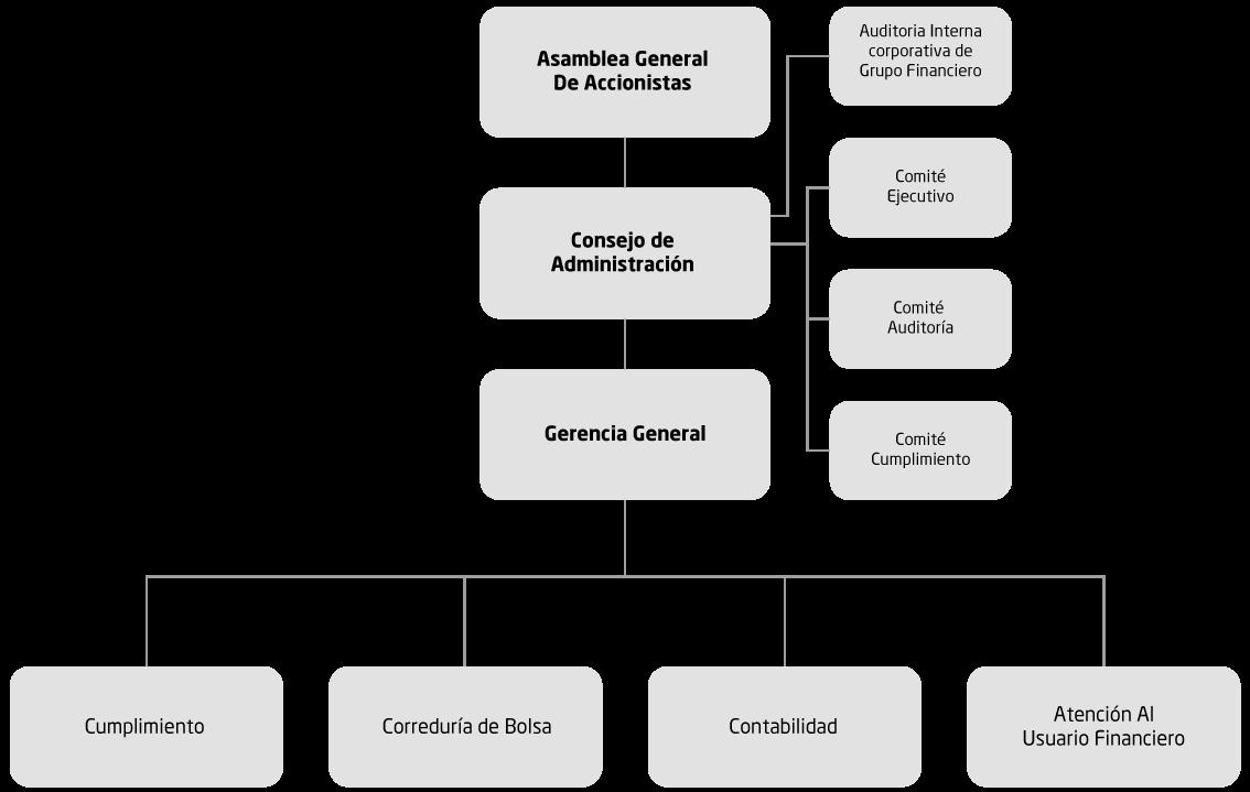 Estructura Organizacional Casa De Bolsa Atlántida